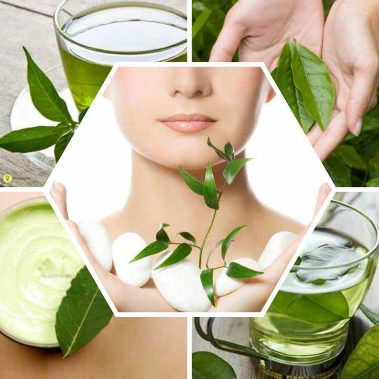 فوائد واستعمالات الشاي الأخضر للبشرة والشعر