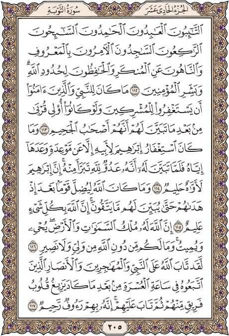 القرآن تدبر وعمل  صفحة رقم 205 سورةالتوبة